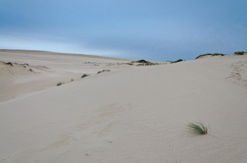 sand-dunes-swan-lake