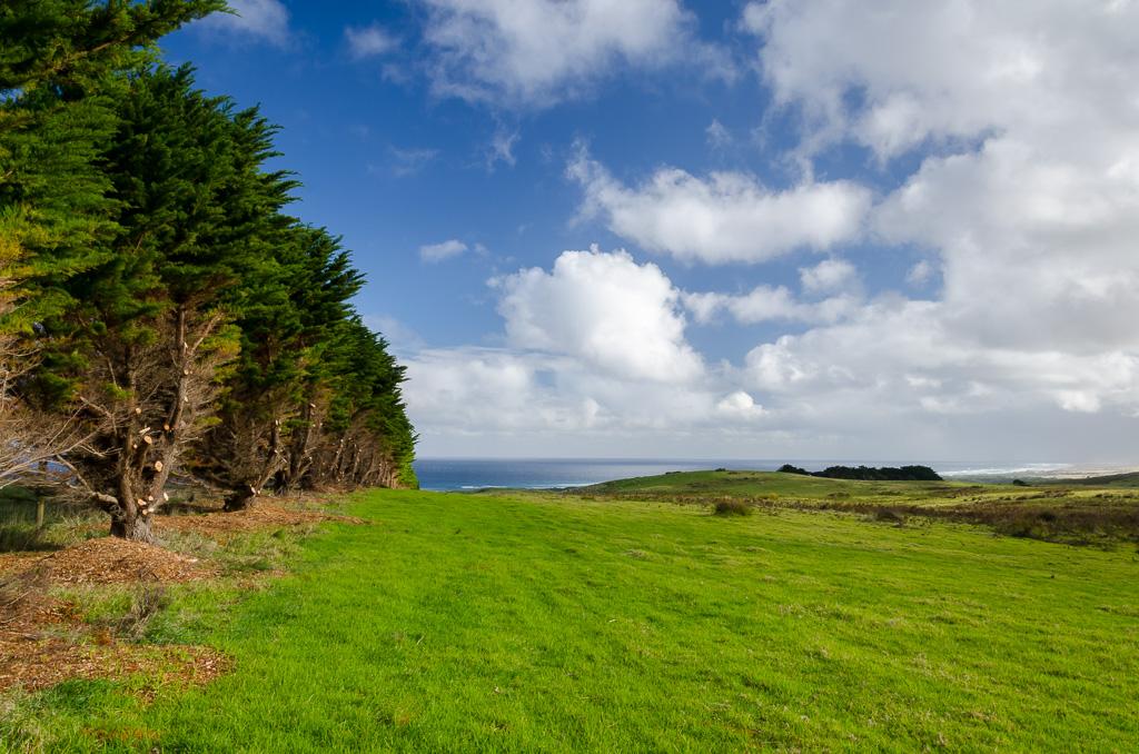 green-paddocks-ocean-view-bridgewater