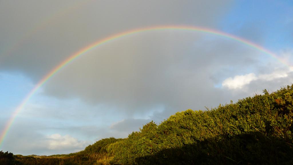 rainbow-above-springs-camp