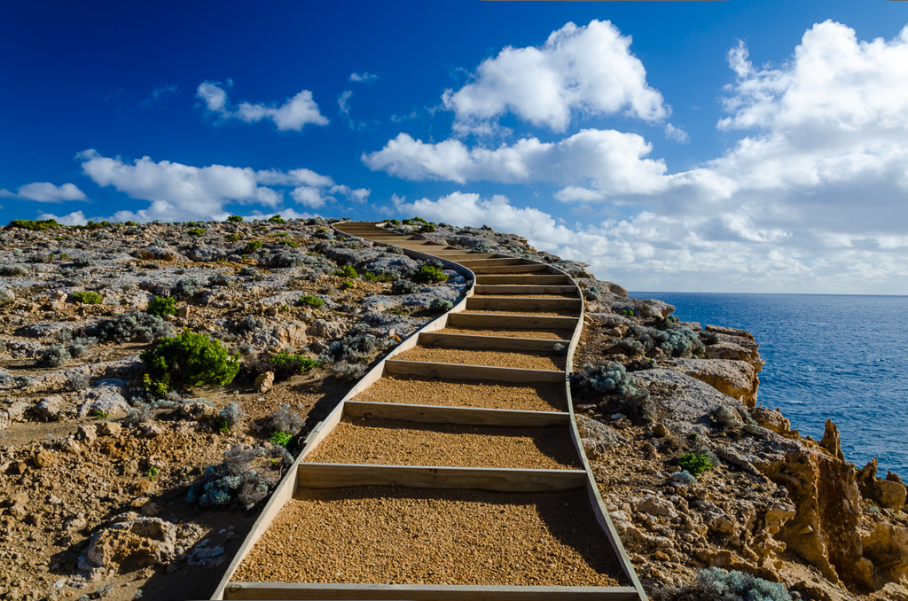 walking-track-great-south-west-walk