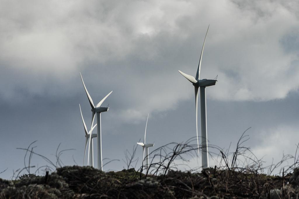 wind-farm-cape-bridgewater