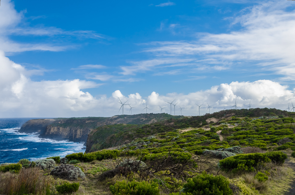 wind-farm-near-blowhole