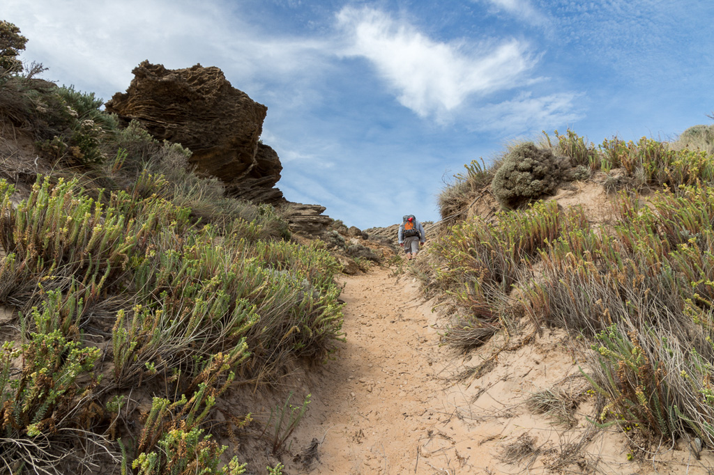 inland-track-the-arch-cape-liptrap