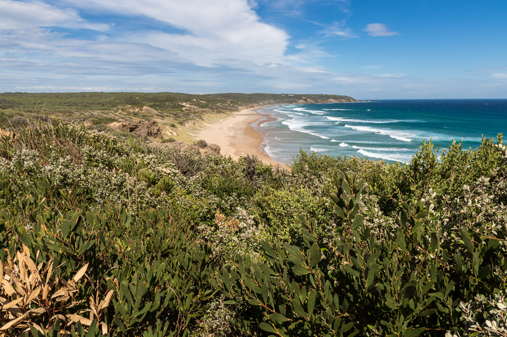 morgan-beach-from-cliff-tops-cape-liptrap