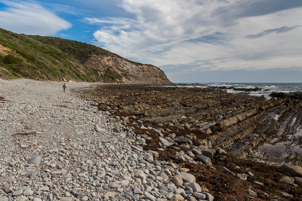 pebble-beach-cape-liptrap