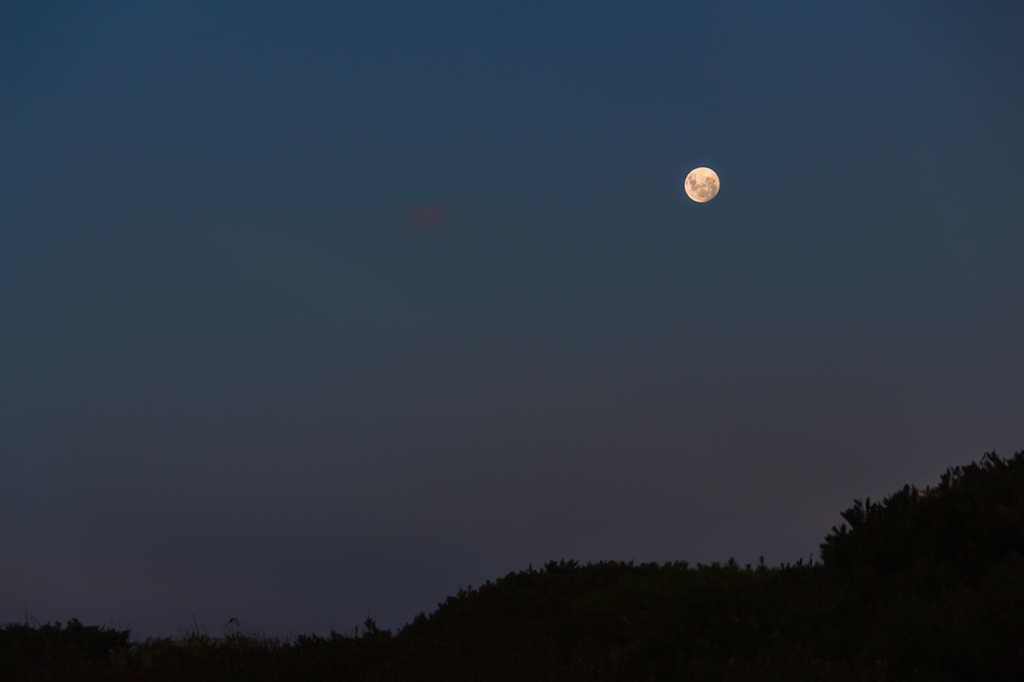 rising-moon