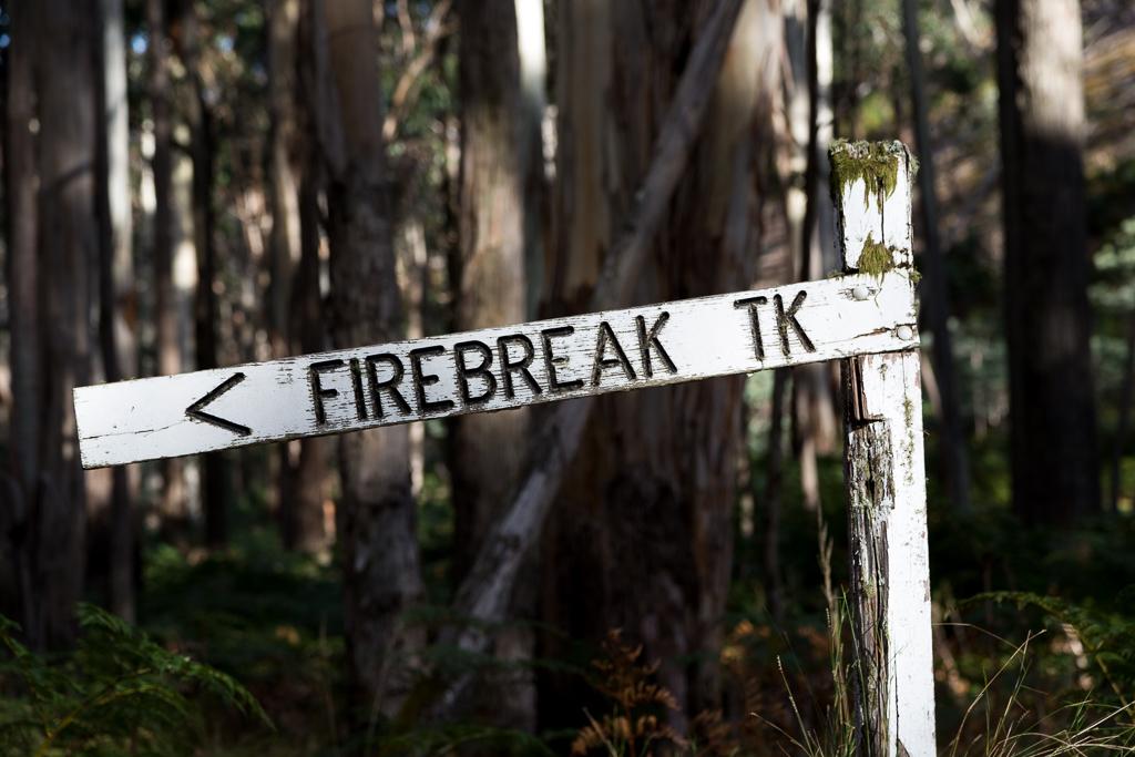 firebreak-track-sign