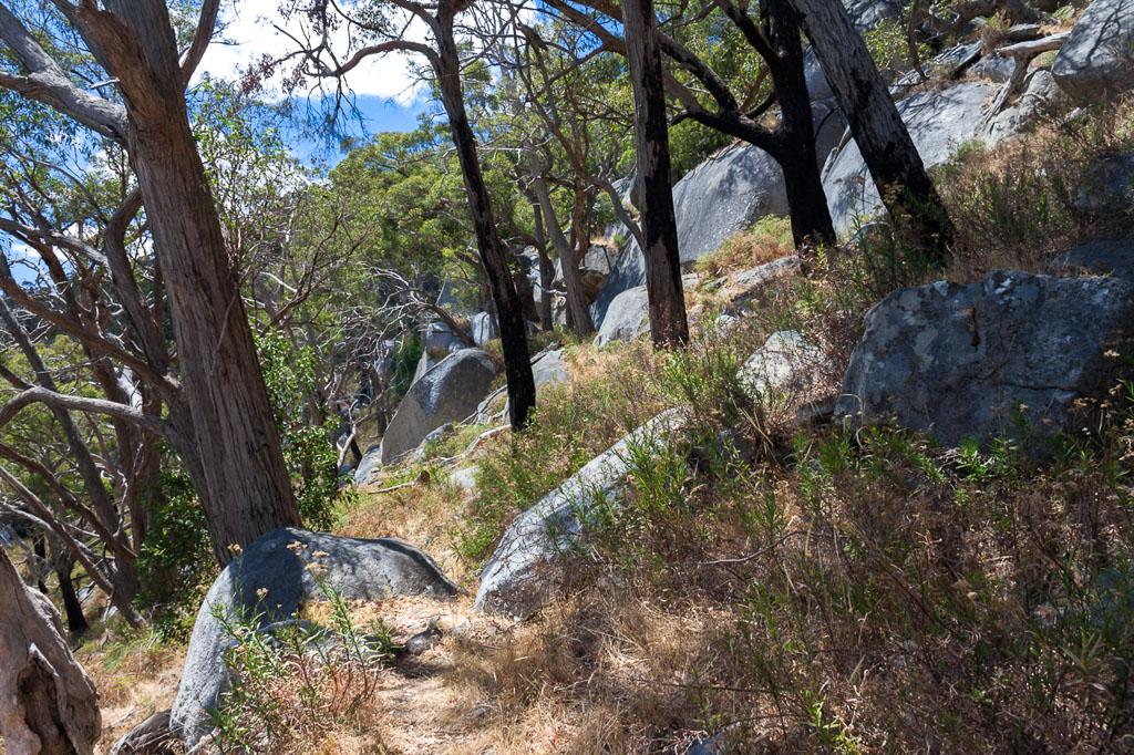 scorpion-rocks-west-ridge-track