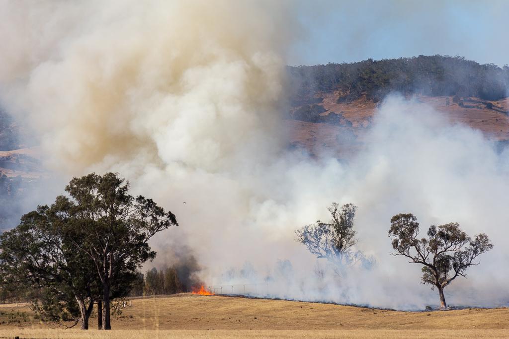 smoke-from-grass-fire