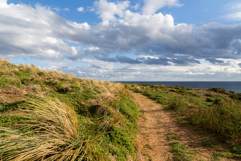 walking-track-cape-woolamai