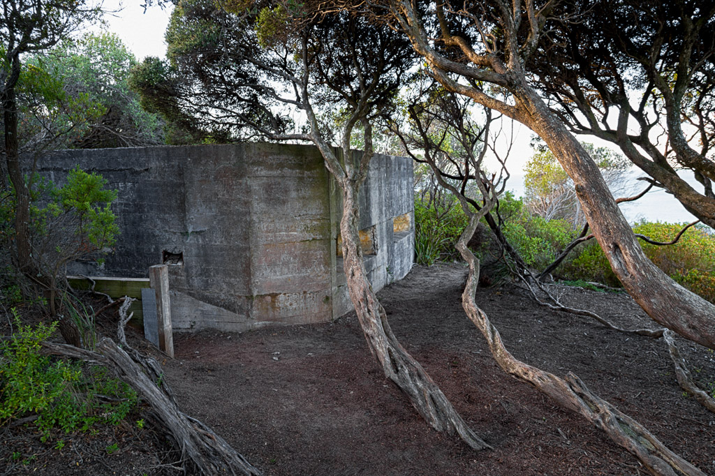 bunker-within-trees-point-nepean
