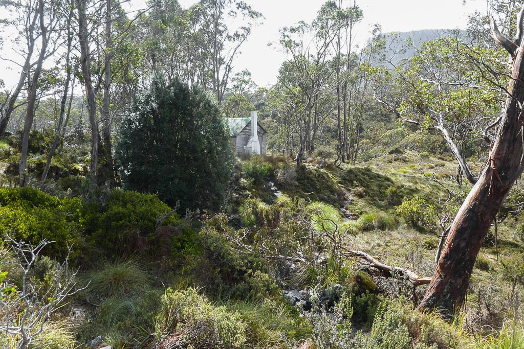 old-pelion-hut-overland-track
