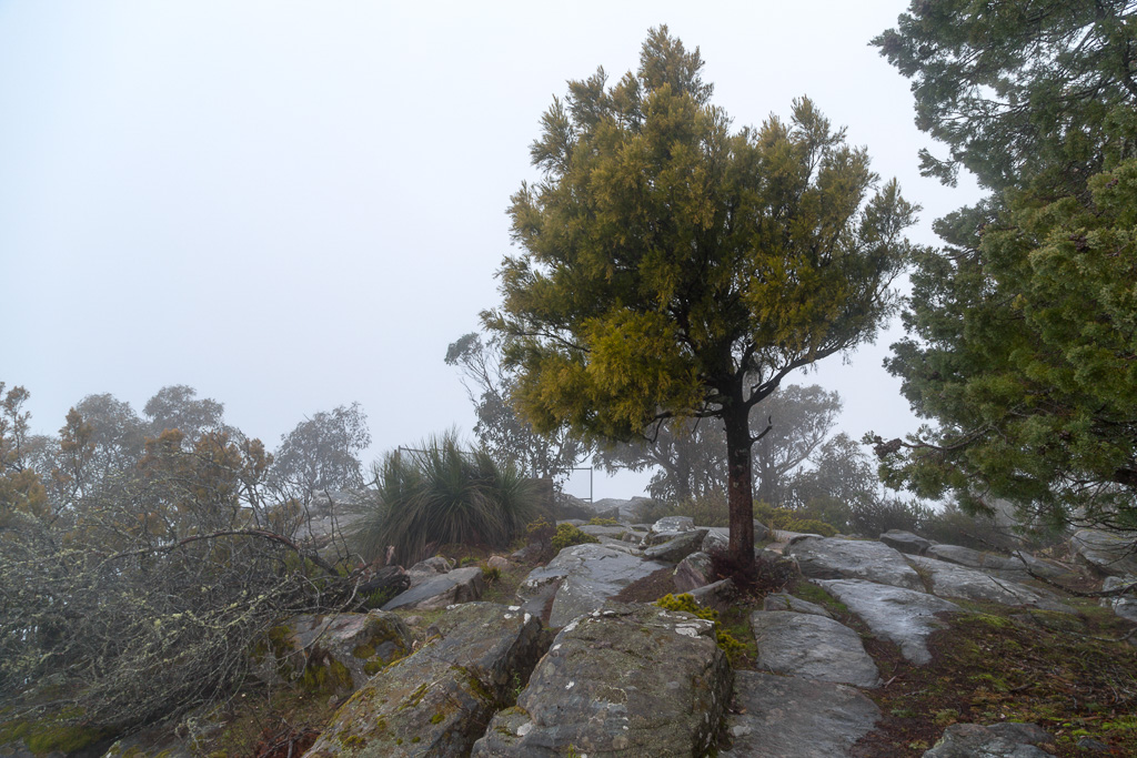 low-cloud-sundial-peak-summit