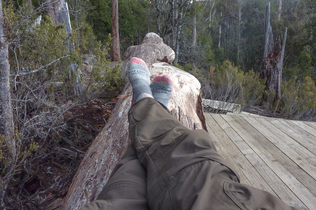 lying-on-log-bert-nichols-hut-overland-track