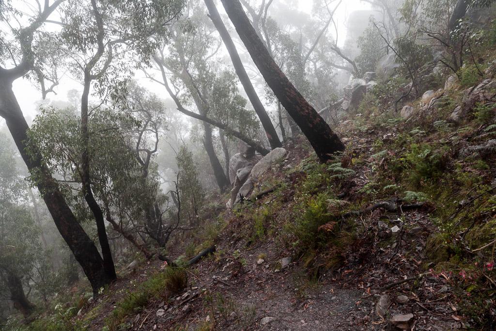 mist-track-descending-sundial-peak