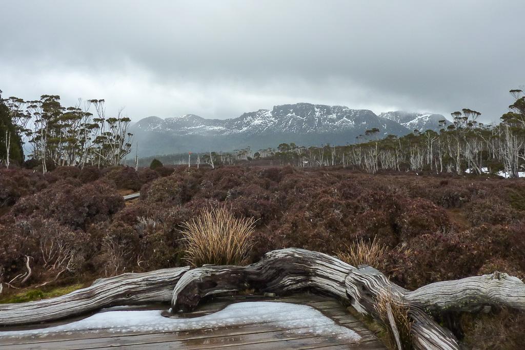 pelion-gap-overland-track-tasmania