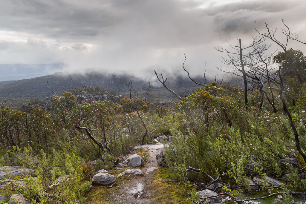 rain-clouds-over-mount-rosea-track