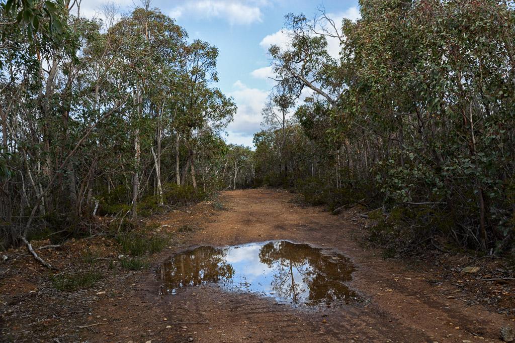 blackwood-ranges-track