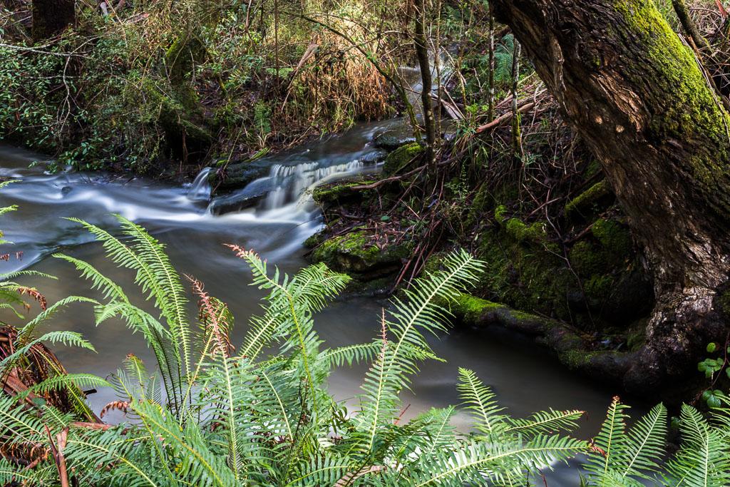 henderson-creek-otways