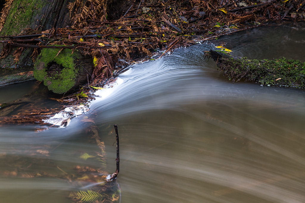 leaves-in-water-under-henderson-falls