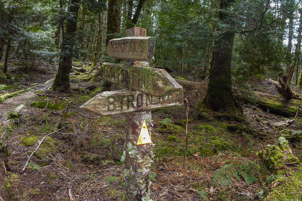 moss-covered-signposts-overland-track