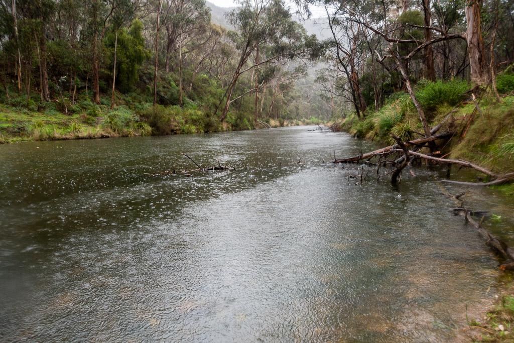 rain-on-lerderderg-river