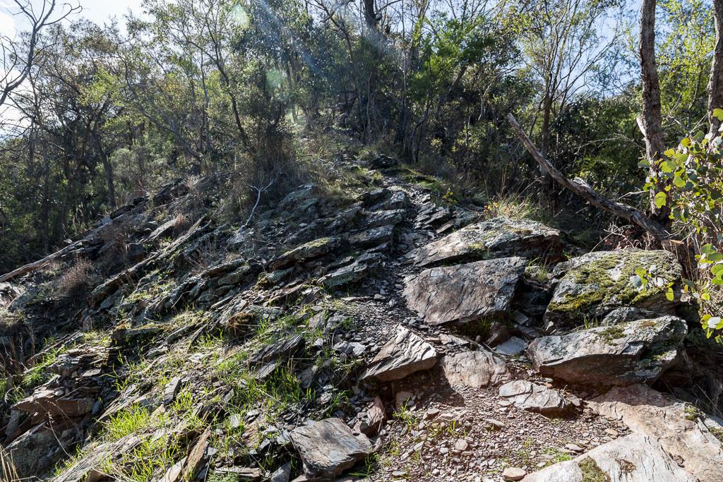 spur-track-lerderderg-gorge