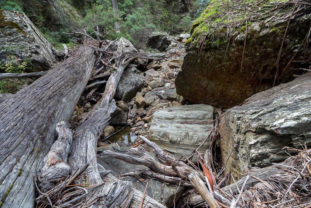 debris-old-river
