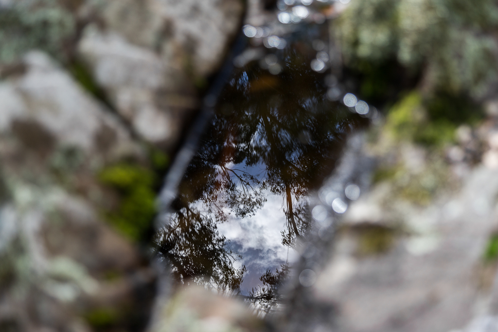 reflection-in-small-rock-pool