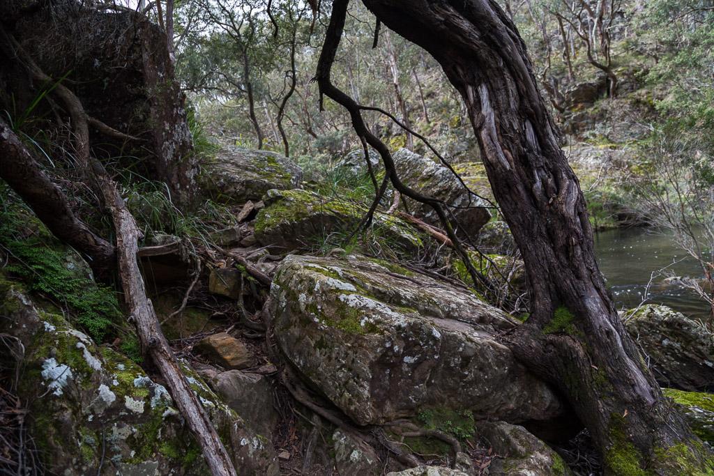 rocks-on-east-walk