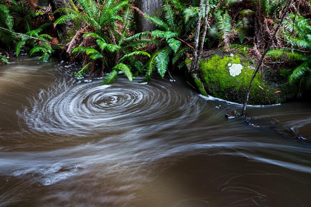 circling-foam-sheoak-creek