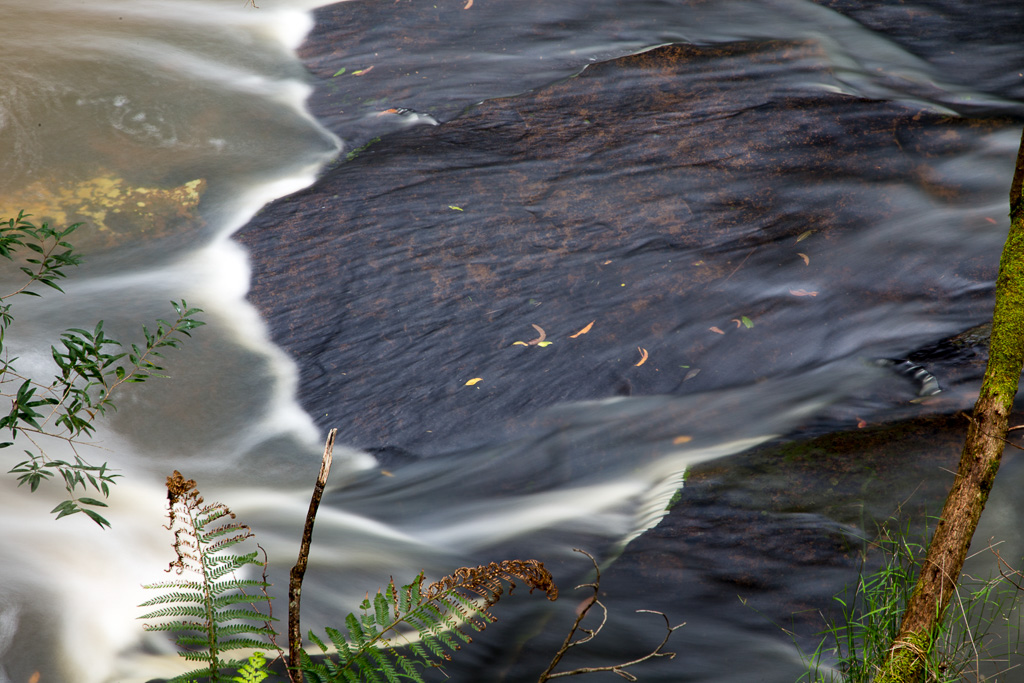 sheoak-creek-long-shutter