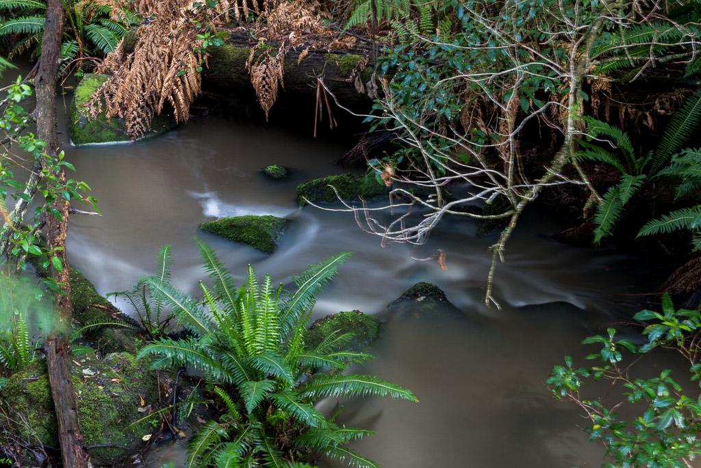 water-flowing-sheoak-creek