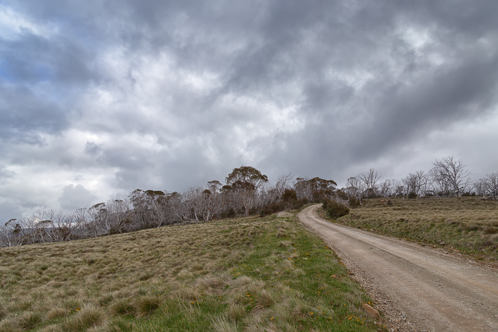 howitt-road-alpine-national-park