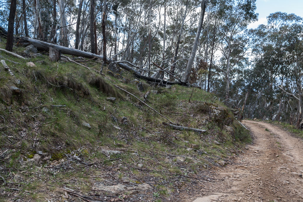 start-wonnangatta-spur-track