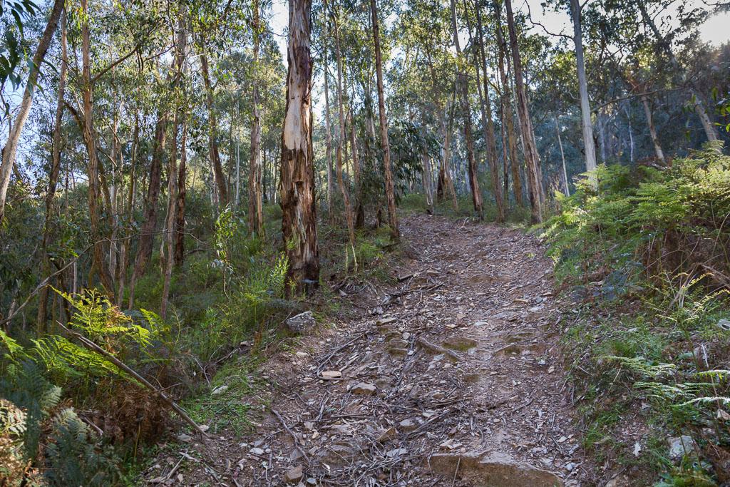 climbing-lerderderg-no-2-track