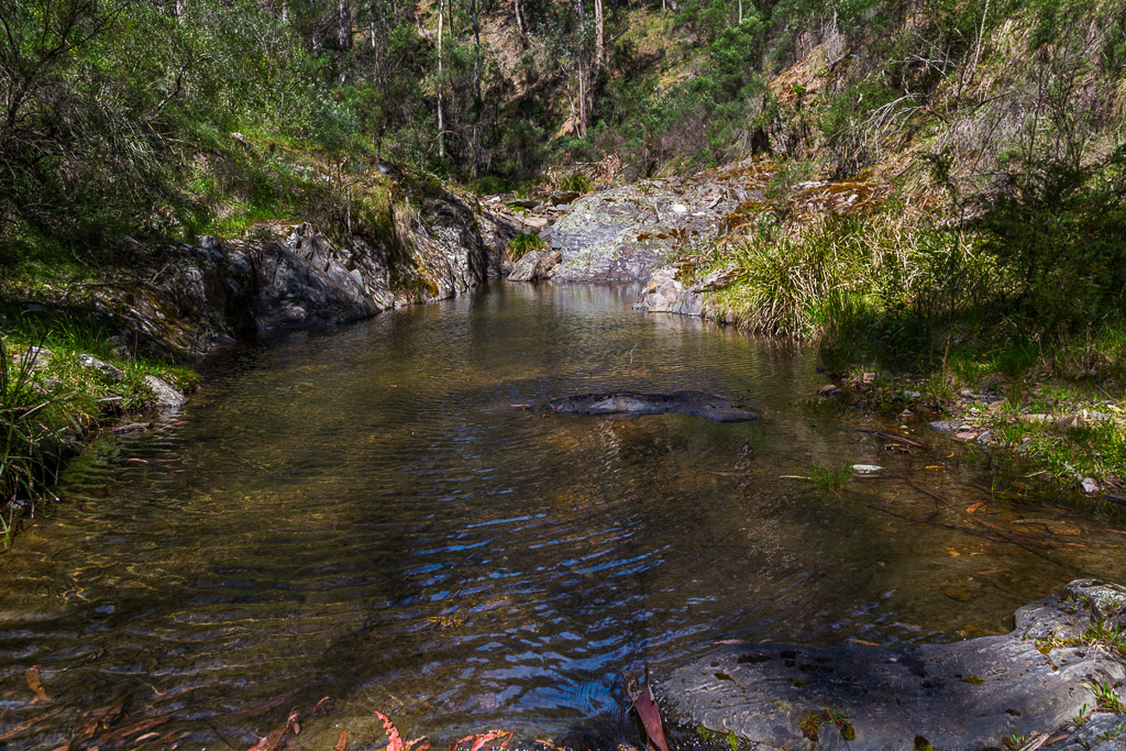 rock-pool-clearwater-creek