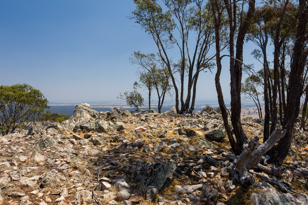 trees-rocks-mount-ida