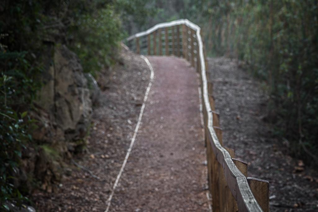 walkway-masons-falls-kinglake