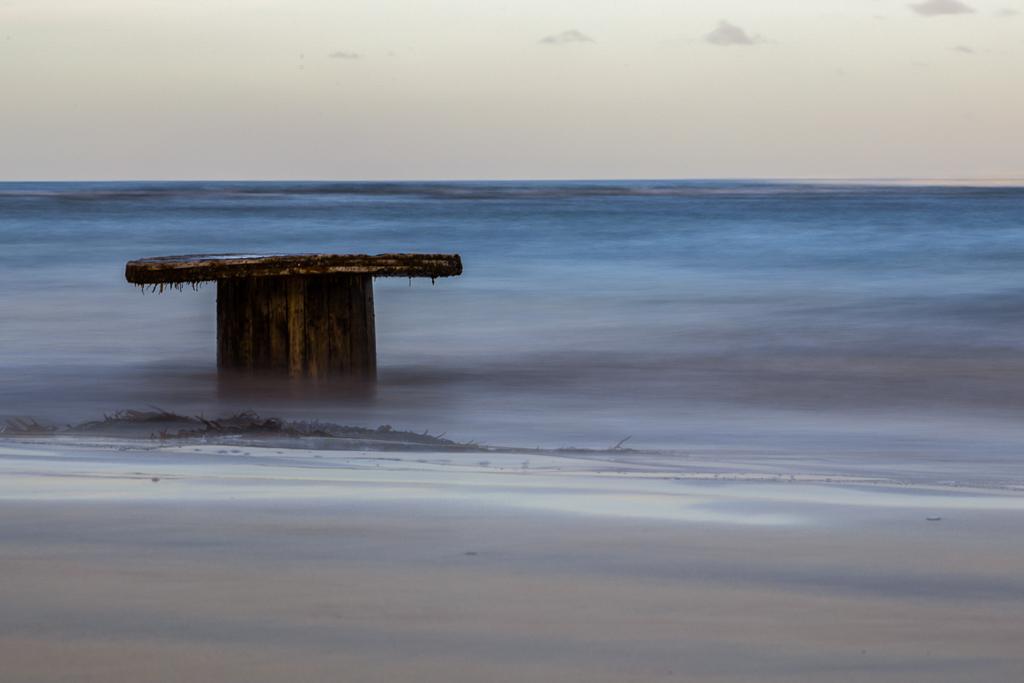 flotsam-on-blanket-bay-beach