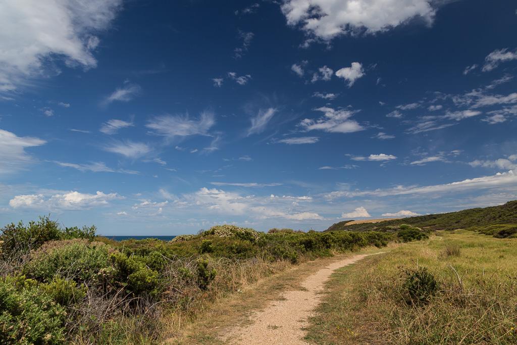 great-ocean-walk-track-marengo
