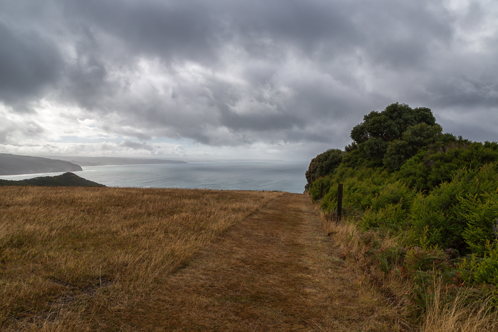 hill-near-ryans-den-great-ocean-walk