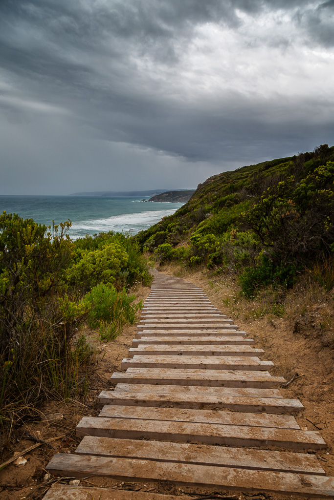 timber-track-near-castle-cove