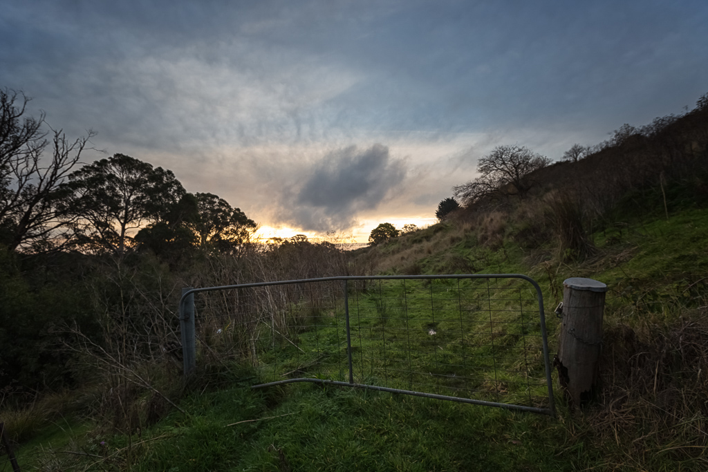 bush-track-daylesford