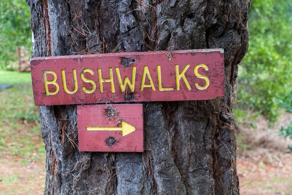 bushwalks-sign