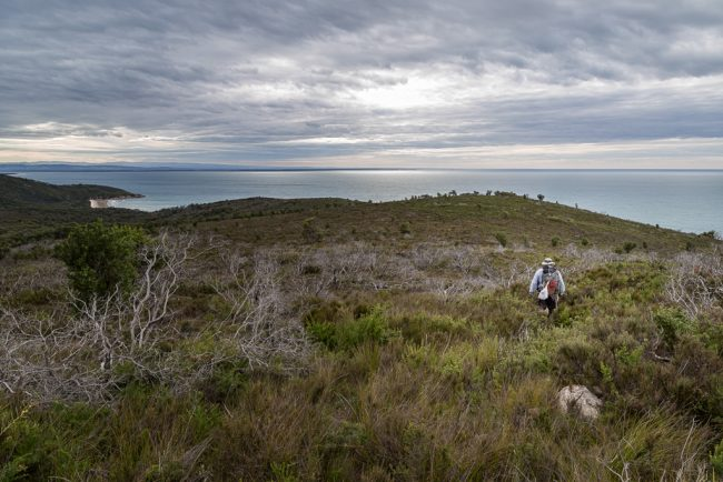 johnny-souey-track-wilsons-promontory