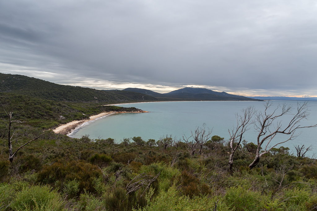 three-mile-point-three-mile-beach-wilsons-promontory