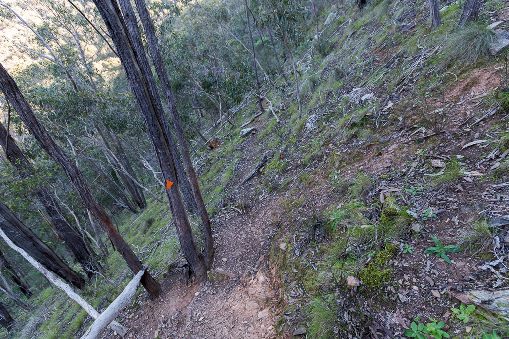 climbing-link-track-no-2-lerderderg-gorge