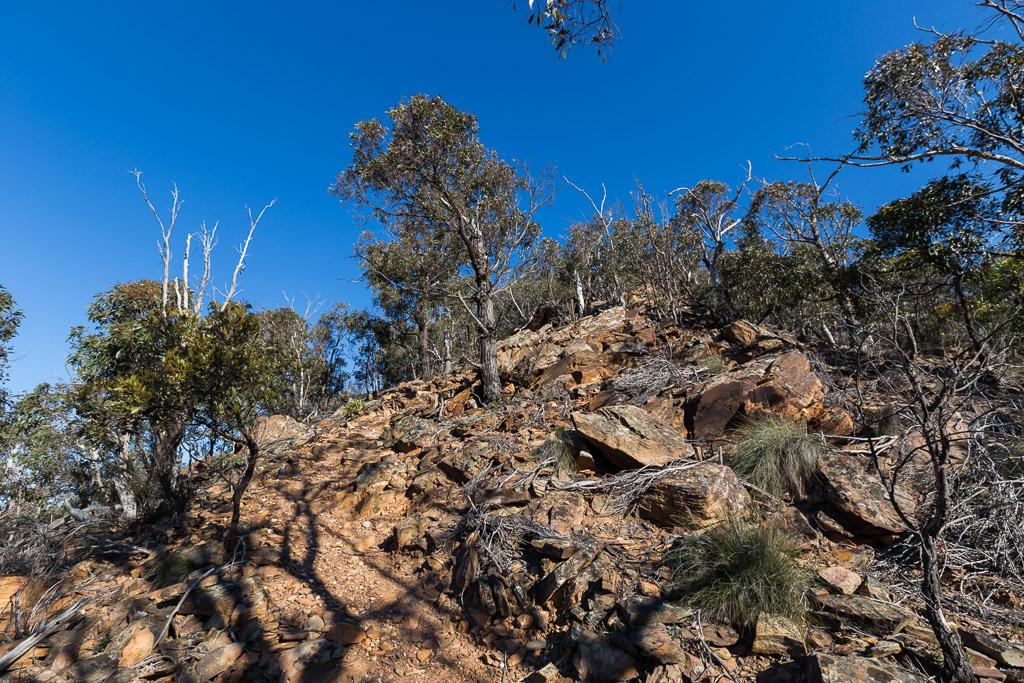 climbing-link-track-no-2