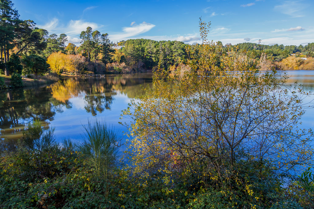 lake-daylesford-autumn